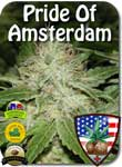 pride-of-amsterdam